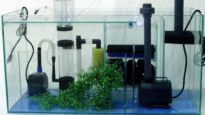 выключать аквариумный фильтр на ночь