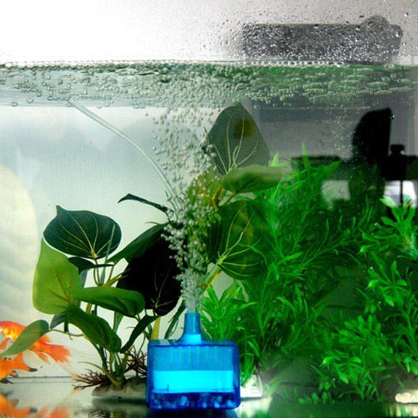 фильтр в аквариуме