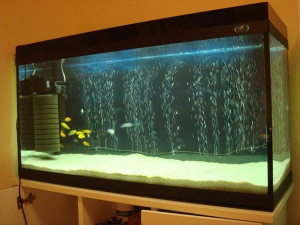 обклеенный аквариум